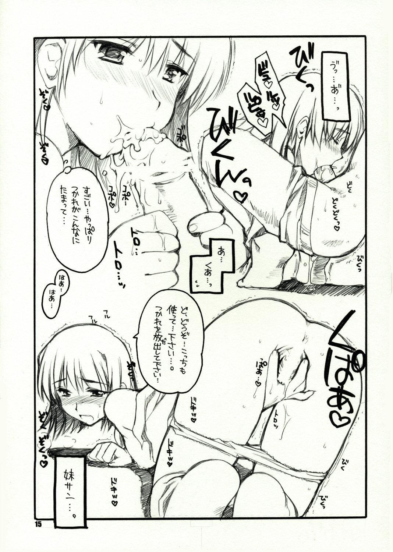 Flyers to Akabei no Hon 13