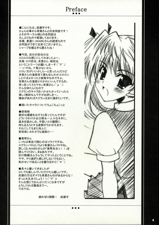 Flyers to Akabei no Hon 2