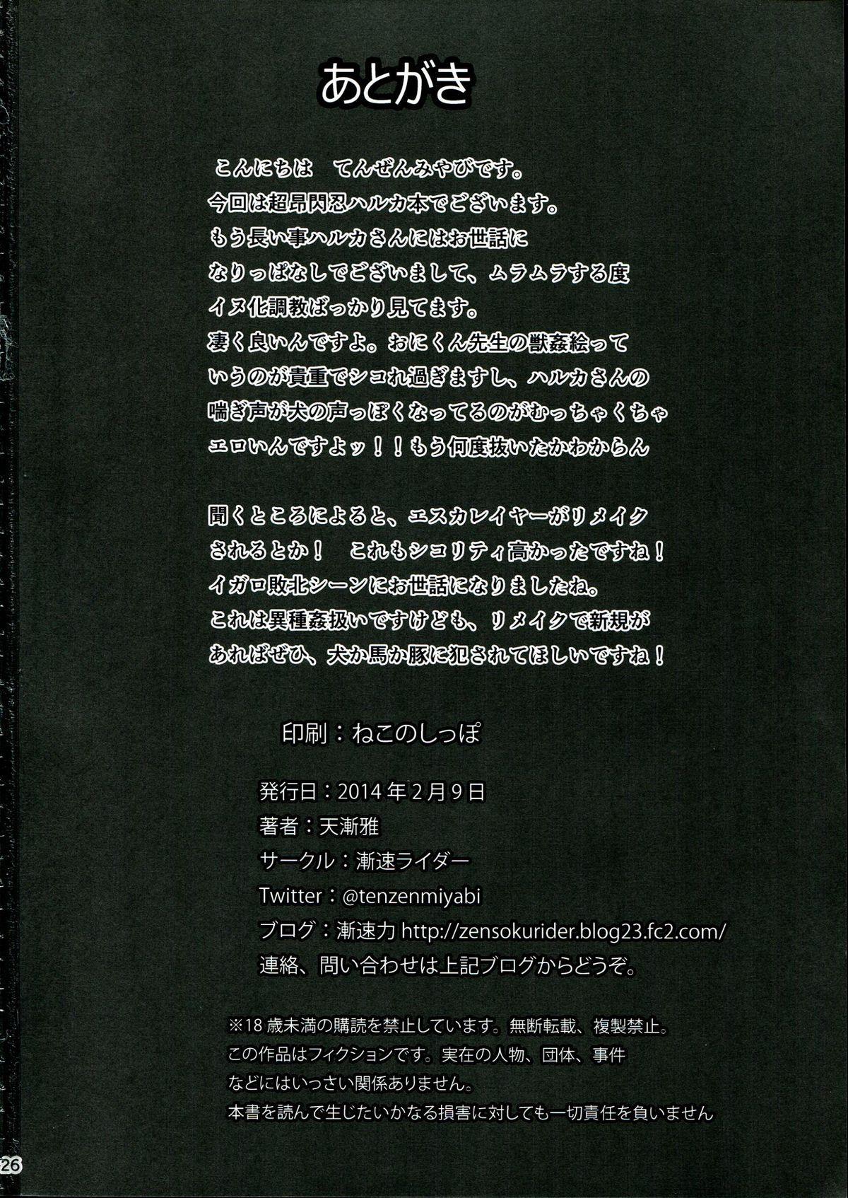 Meinu-ka Choukyou LV. MAX 25
