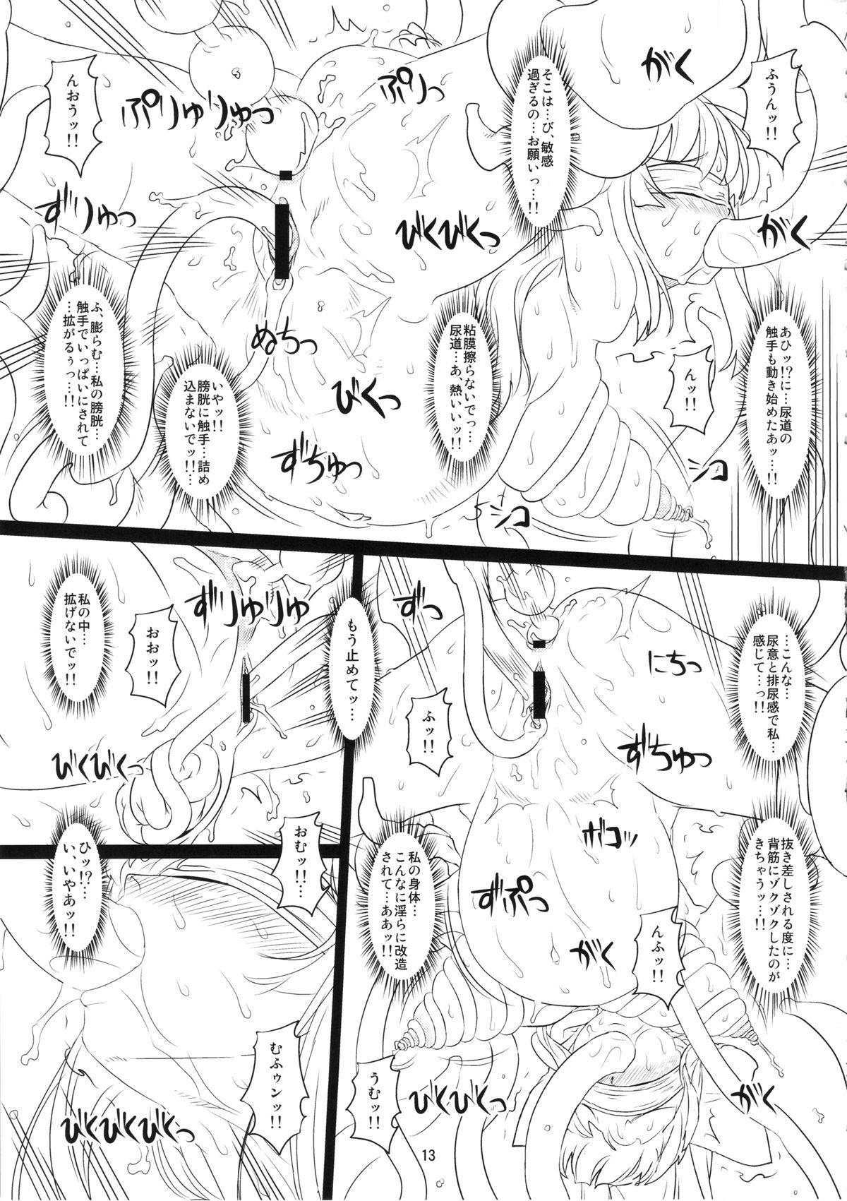 Kokuin no Miko 11