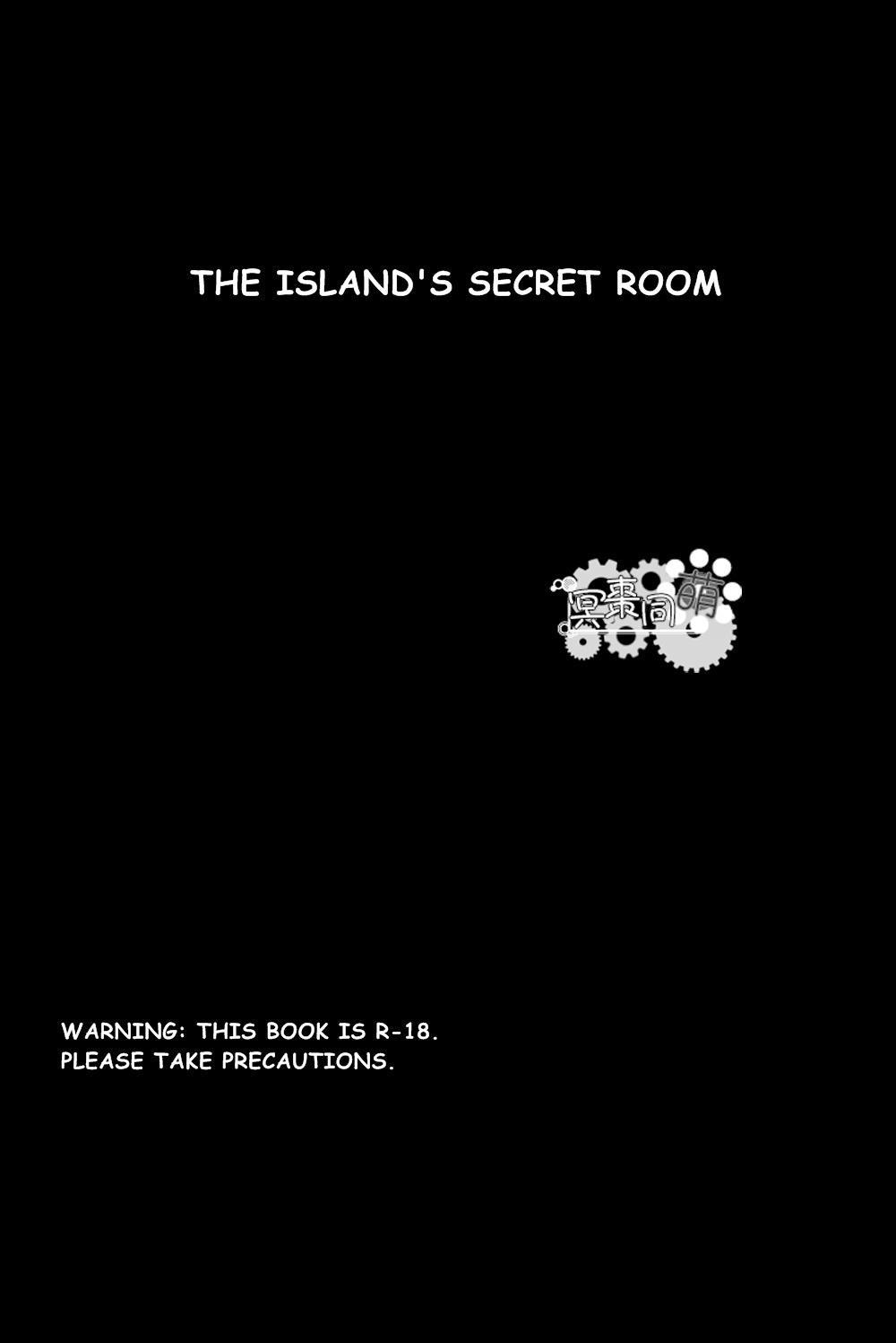 The Island's Secret Room 5