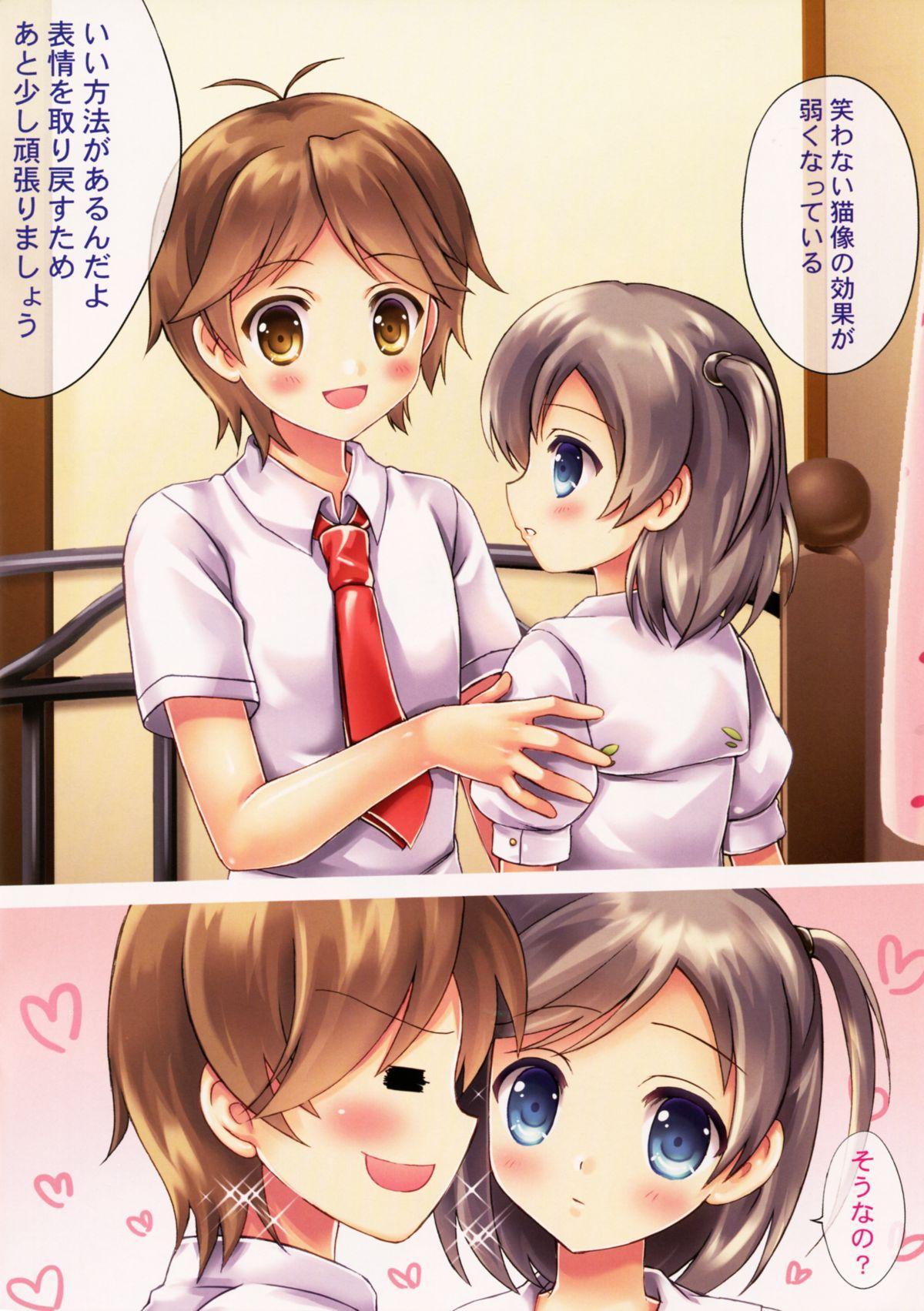 Neko no Shindan to Chiryou 2