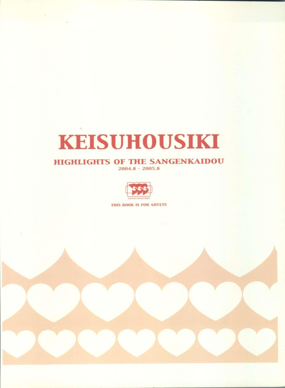 KEISUHOUSIKI 3 1