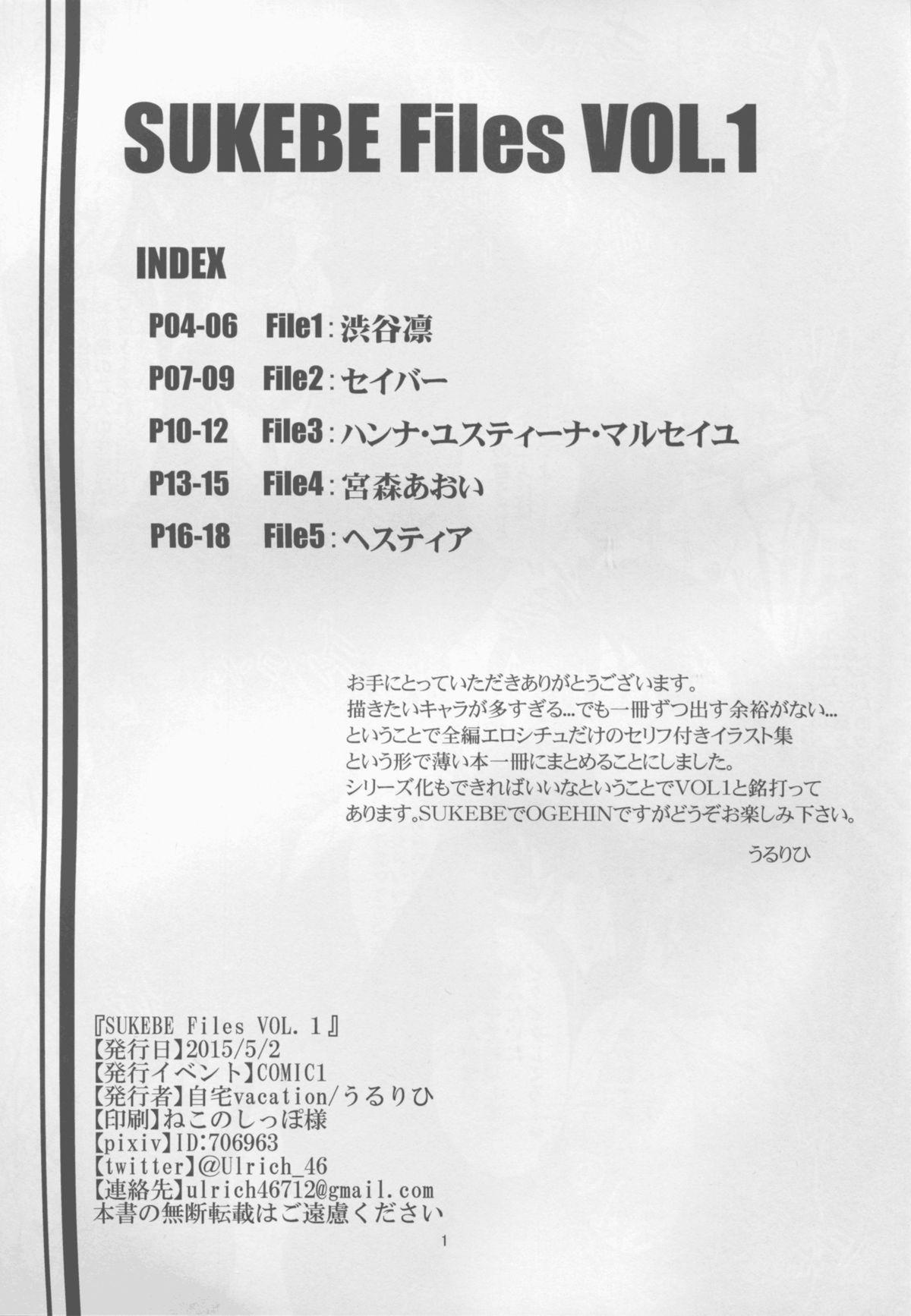 SUKEBE Files VOL. 1 2