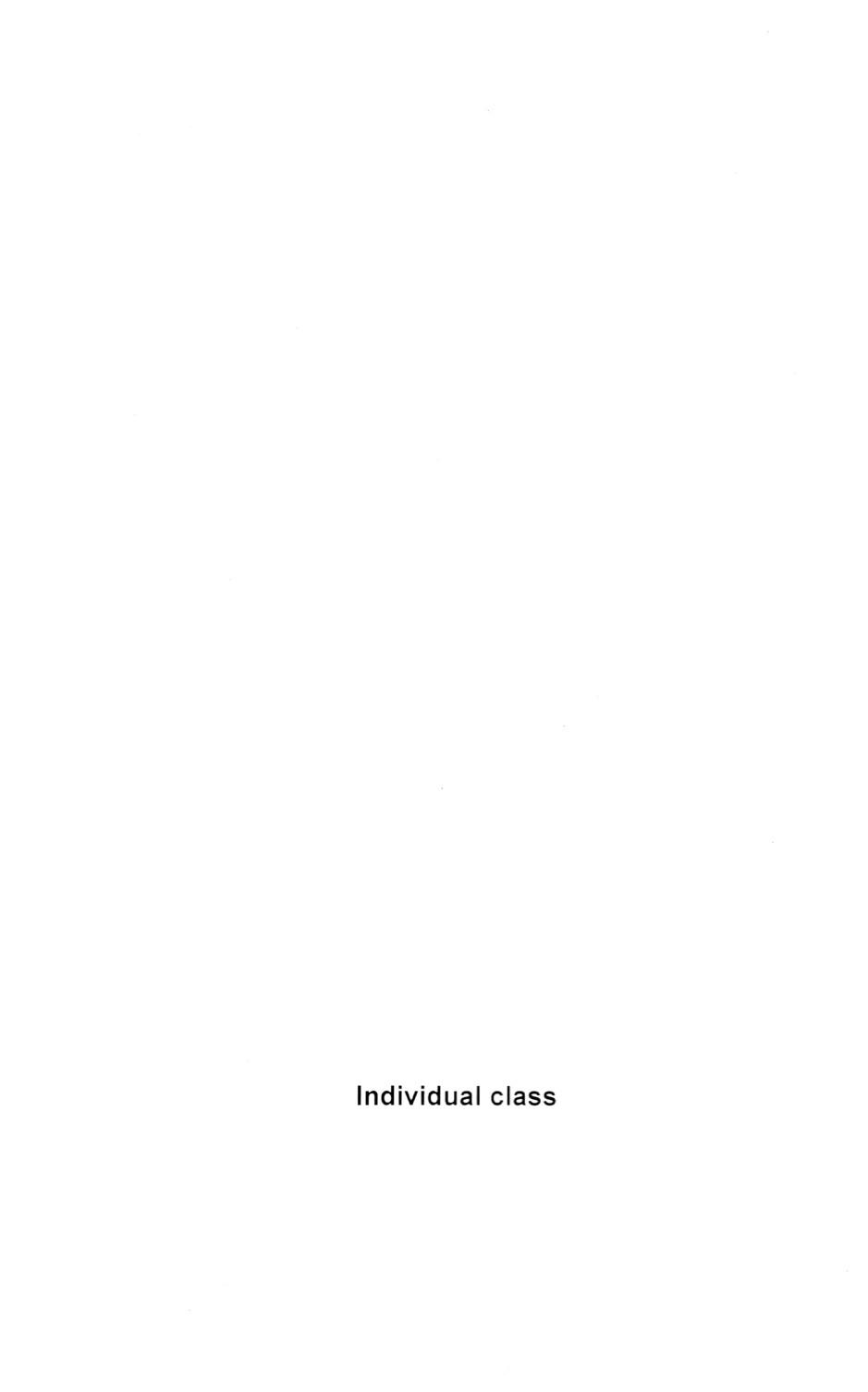 individual class and individual class supplementary lessons 2