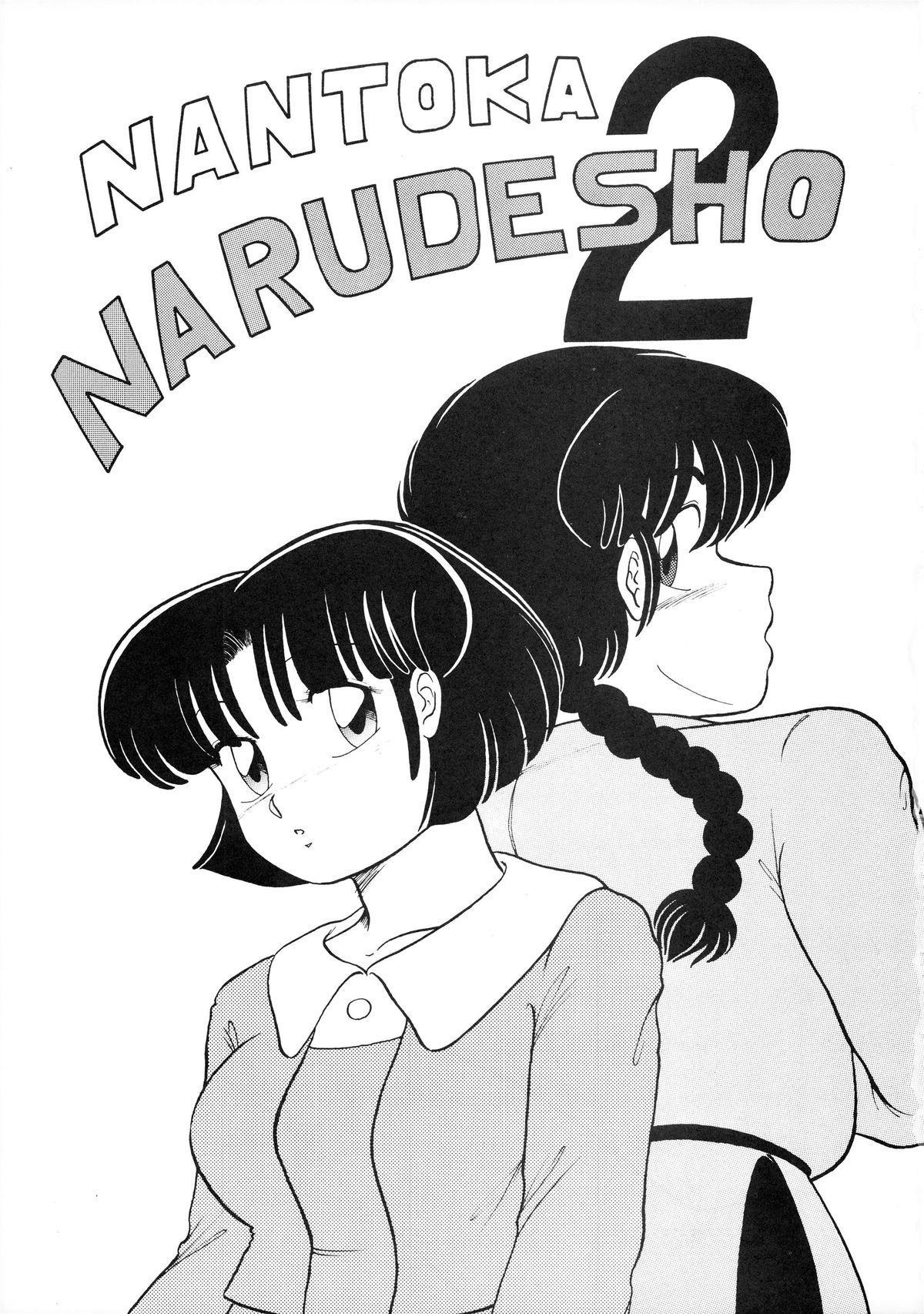 NANTOKA NARUDESHO! 2 2