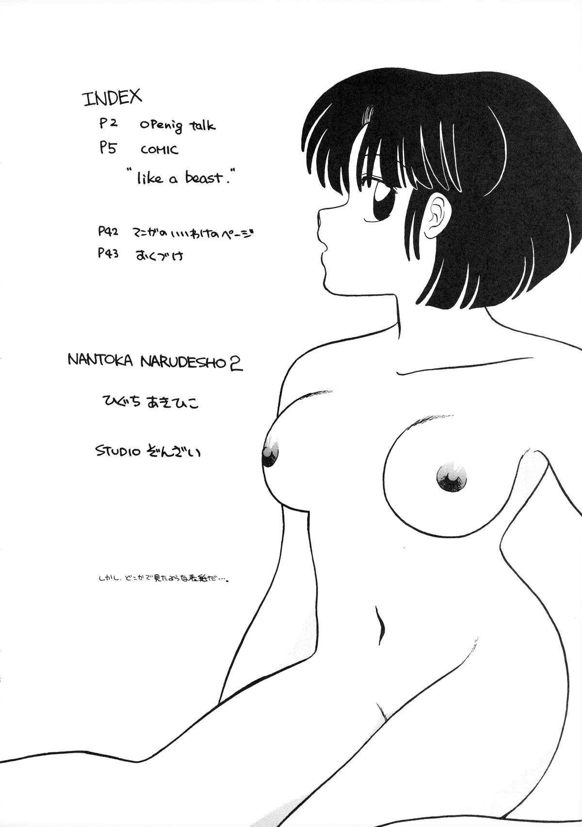 NANTOKA NARUDESHO! 2 3