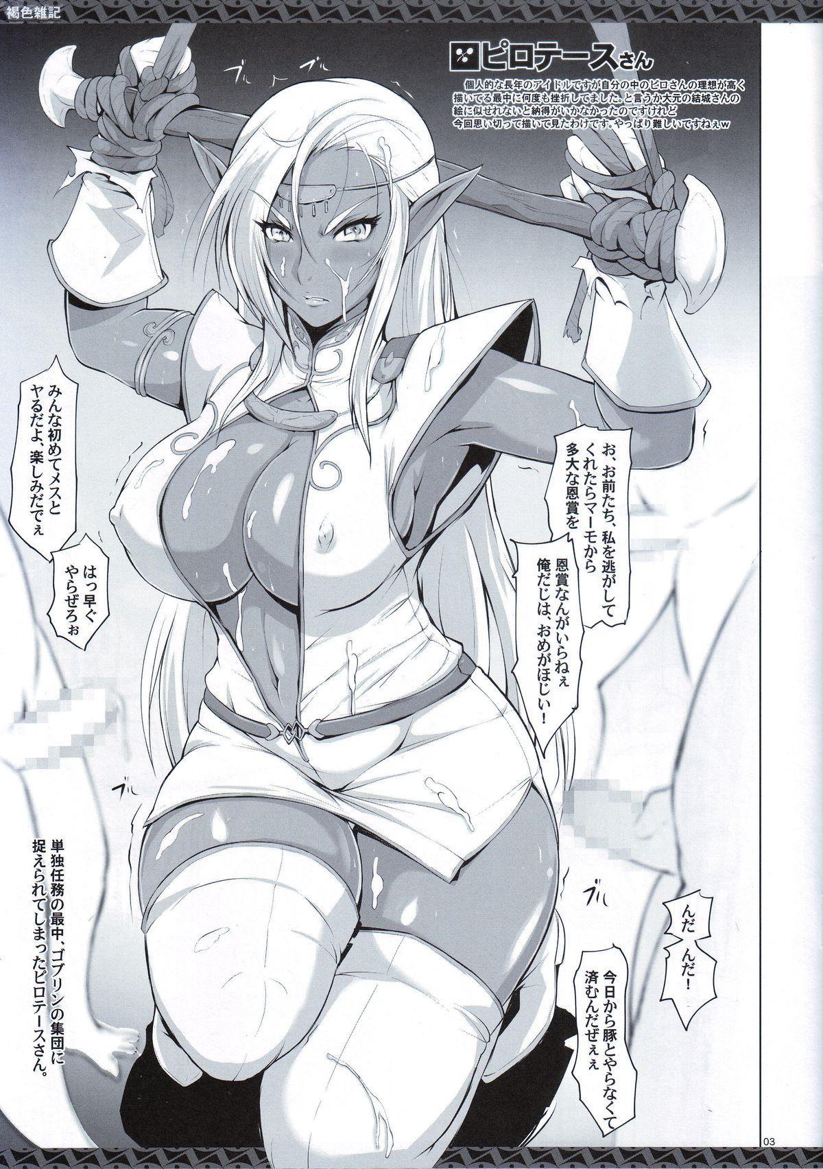 Kasshoku Zakki 2