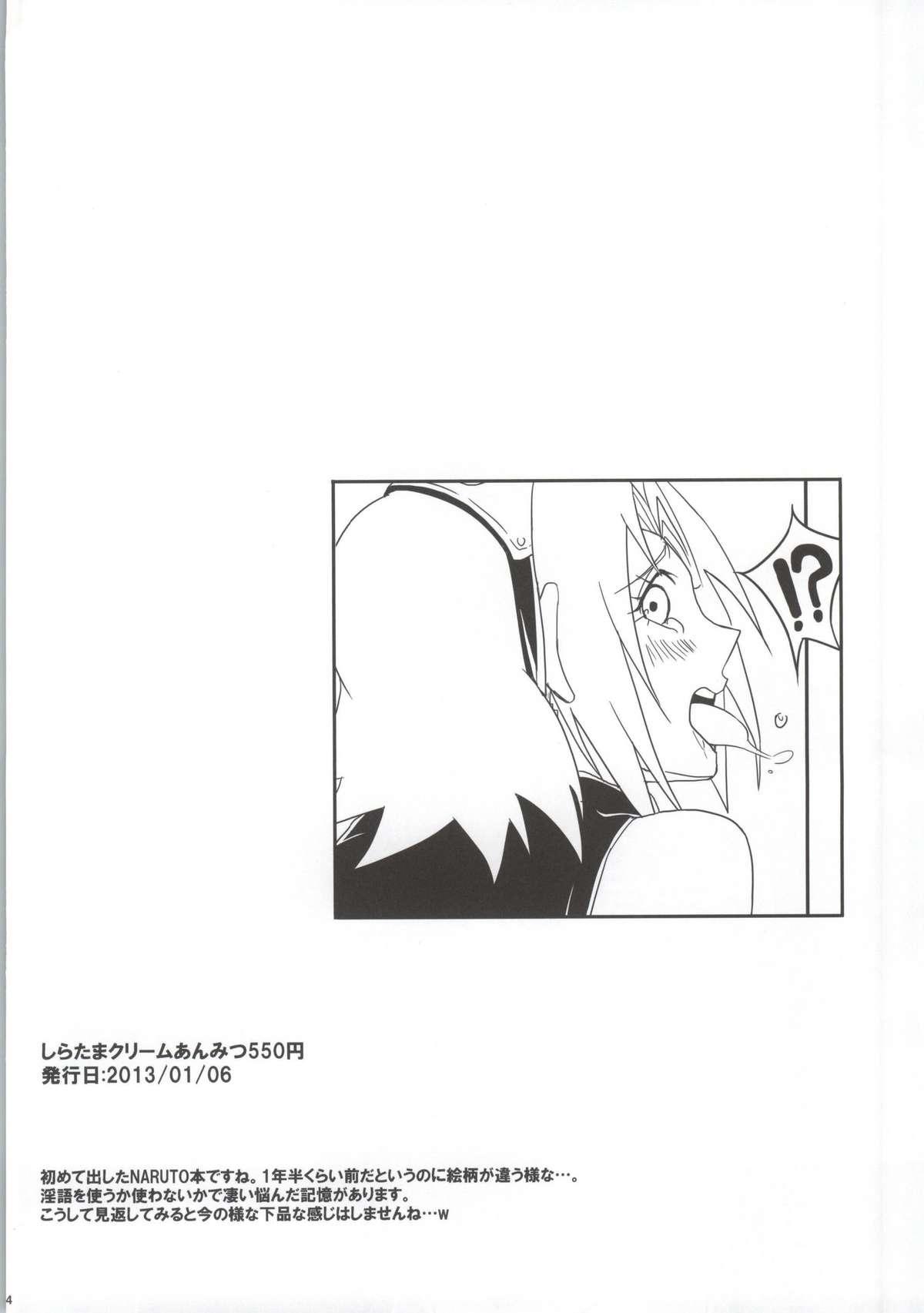 Shinobi no Kokoroe 3