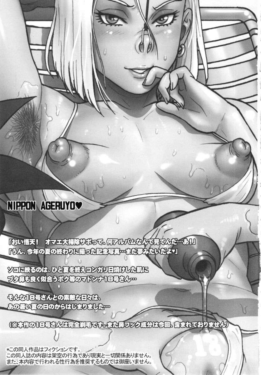 Nippon Ageruyo 1