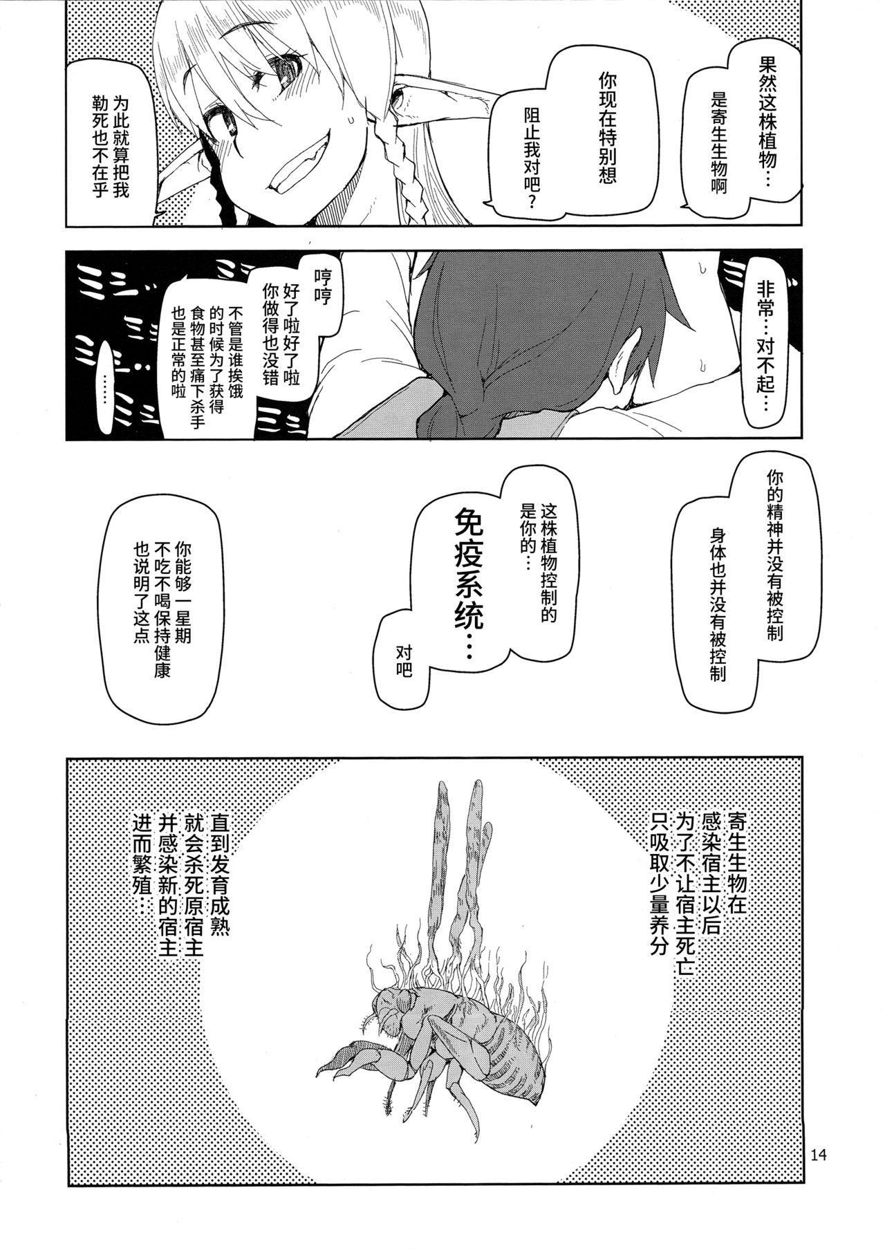Dosukebe Elf no Ishukan Nikki 2 14