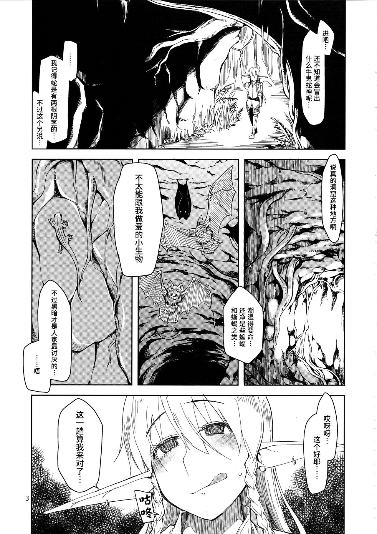 Dosukebe Elf no Ishukan Nikki 2 3