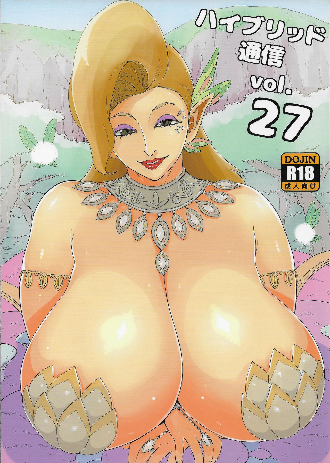 Hybrid Tsuushin Vol. 27 0