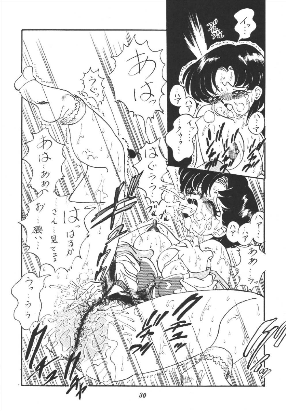 Tsuki no Shiru 29