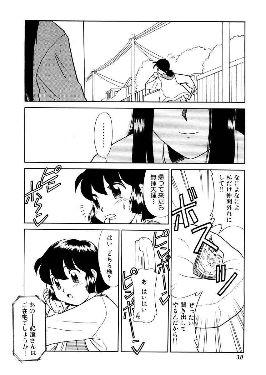 Yume o Miyou yo Vol 1 29