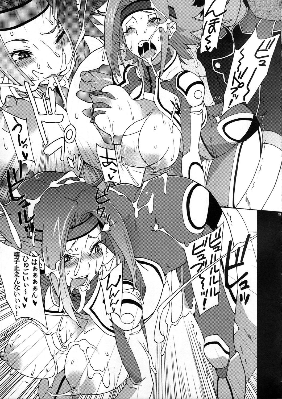 Hakudaku Kishidan 14