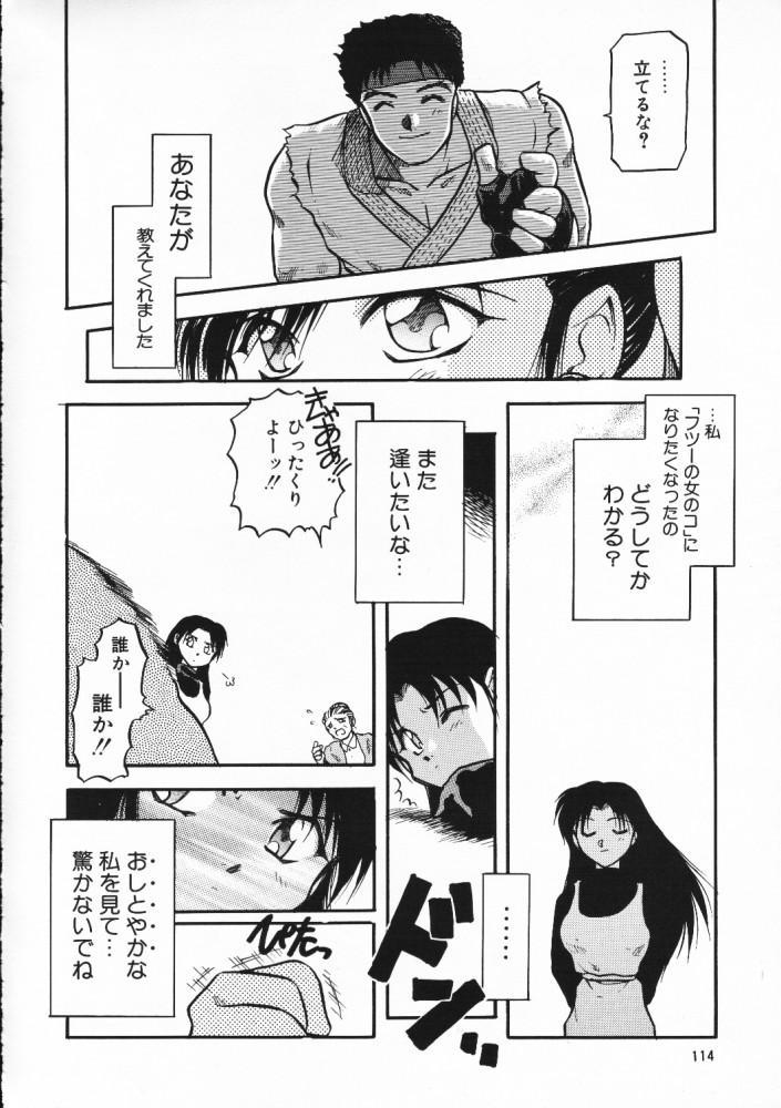 Chou Sairoku PINKISH COLLECTION 109