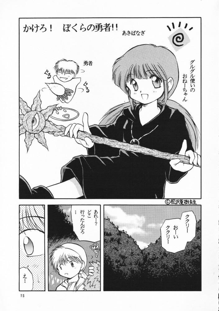 Chou Sairoku PINKISH COLLECTION 13