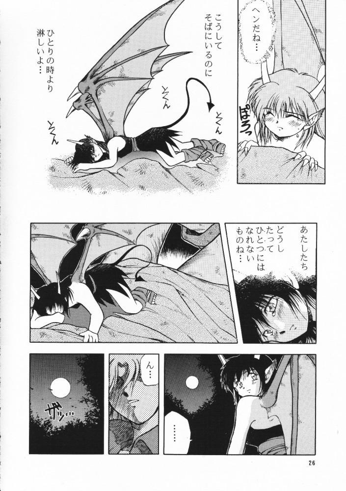 Chou Sairoku PINKISH COLLECTION 24