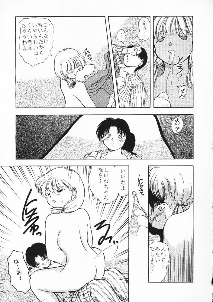 Chou Sairoku PINKISH COLLECTION 66