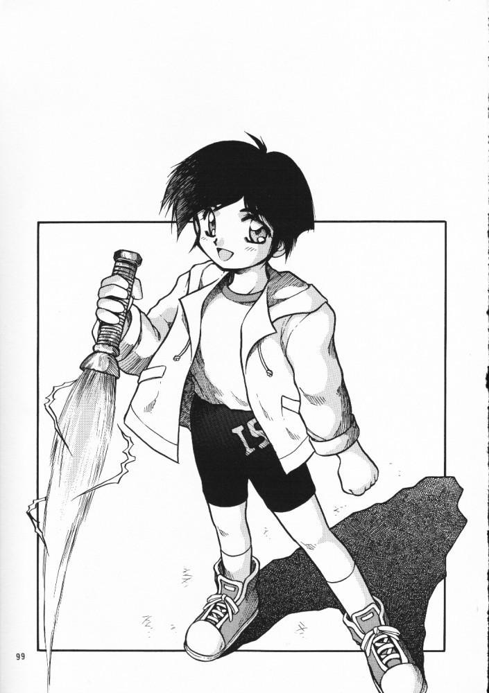 Chou Sairoku PINKISH COLLECTION 94