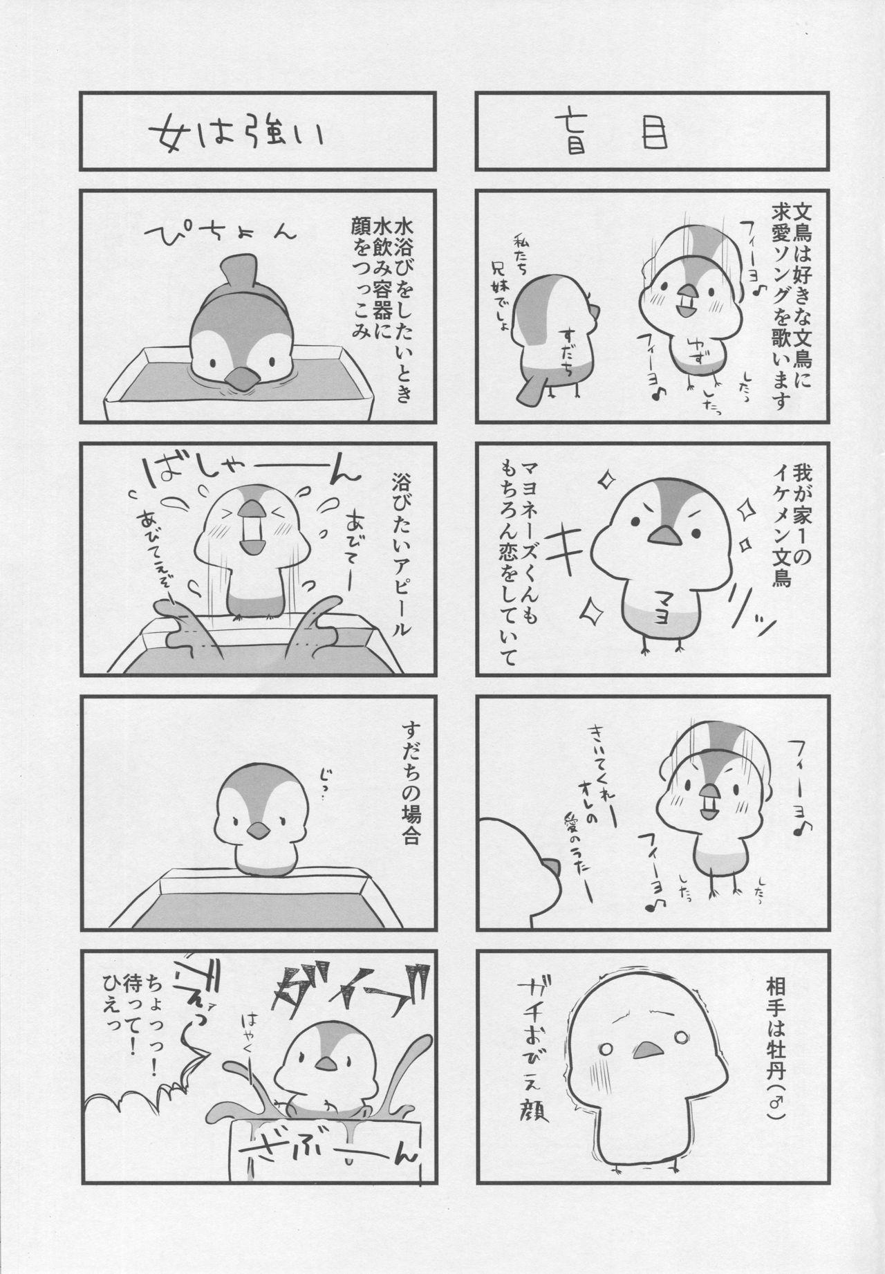 BB-chan no Senpai Yarisute Daisakusen 23