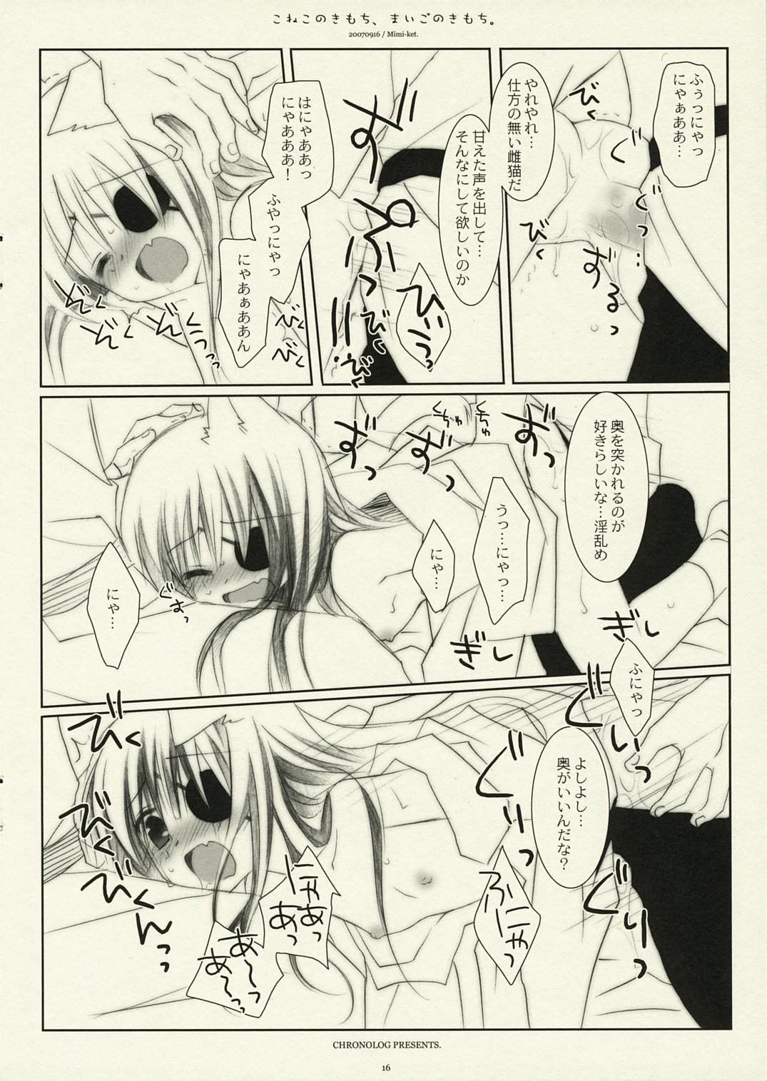 Koneko no Kimochi, Maigo no Kimochi. 14
