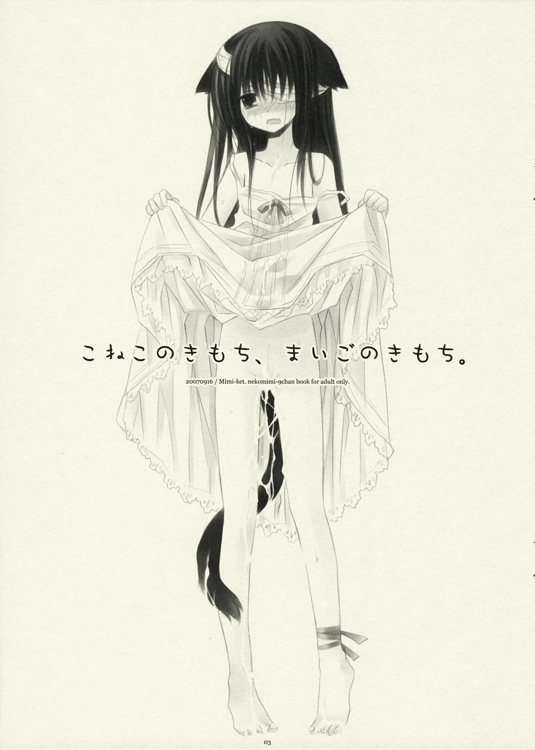 Koneko no Kimochi, Maigo no Kimochi. 1