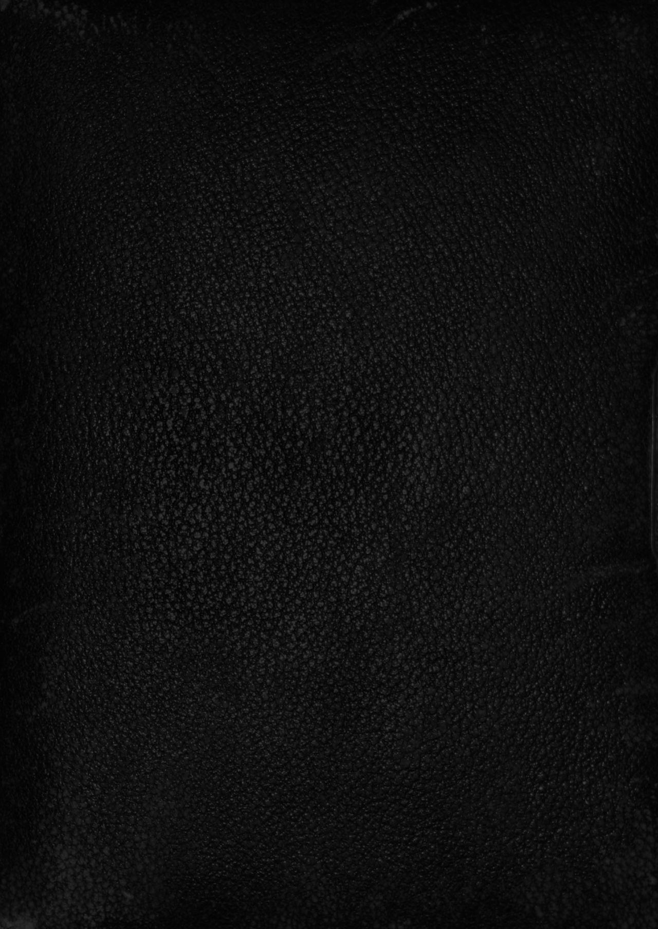Isekai Harem Monogatari Soushuuhen 1 169