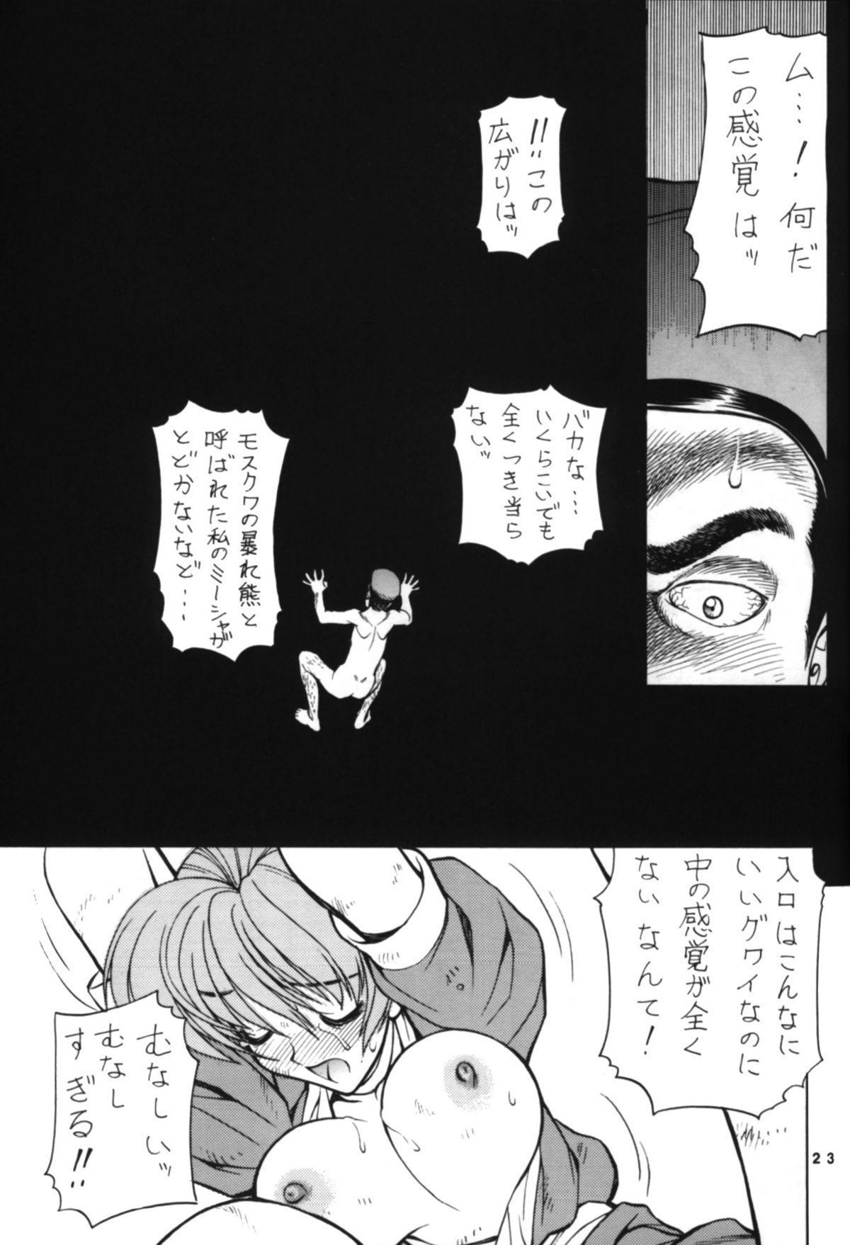 NNDP3 22