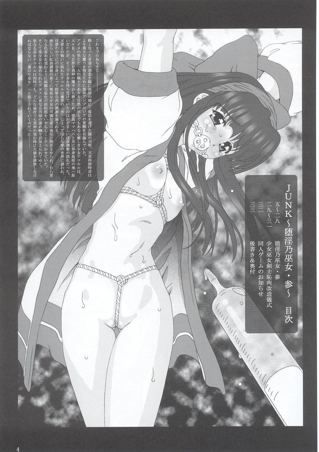 JUNK Dain no Miko San 2