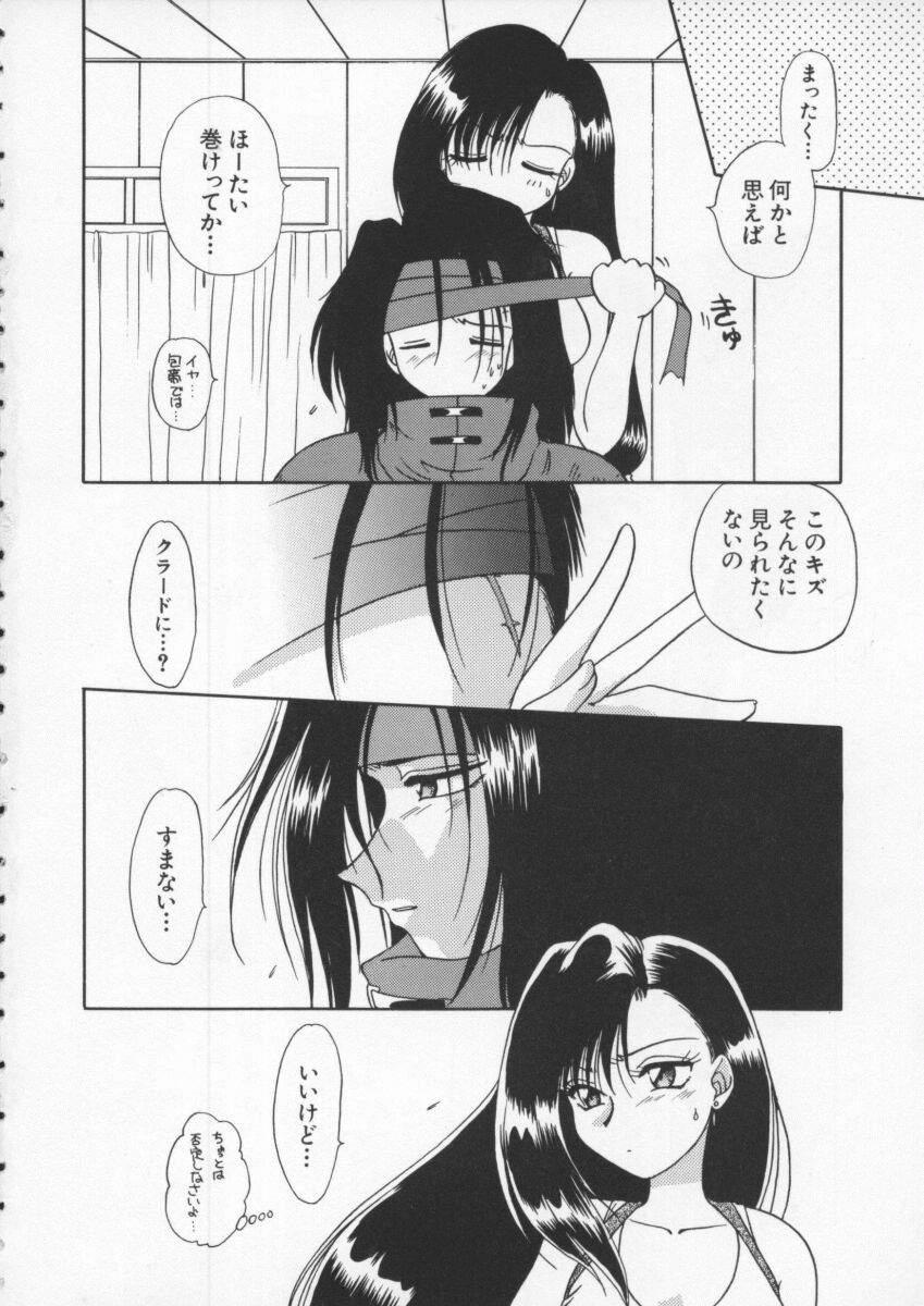 Dennou Butou Musume Vol 6 4