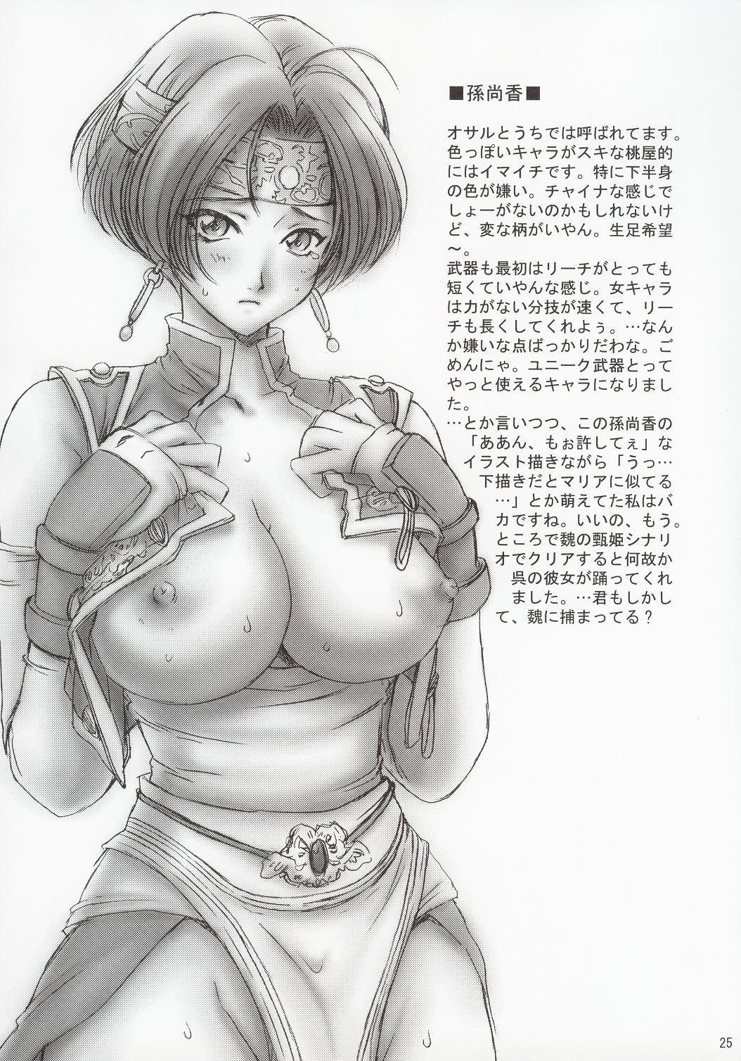 In Sangoku Musou 23