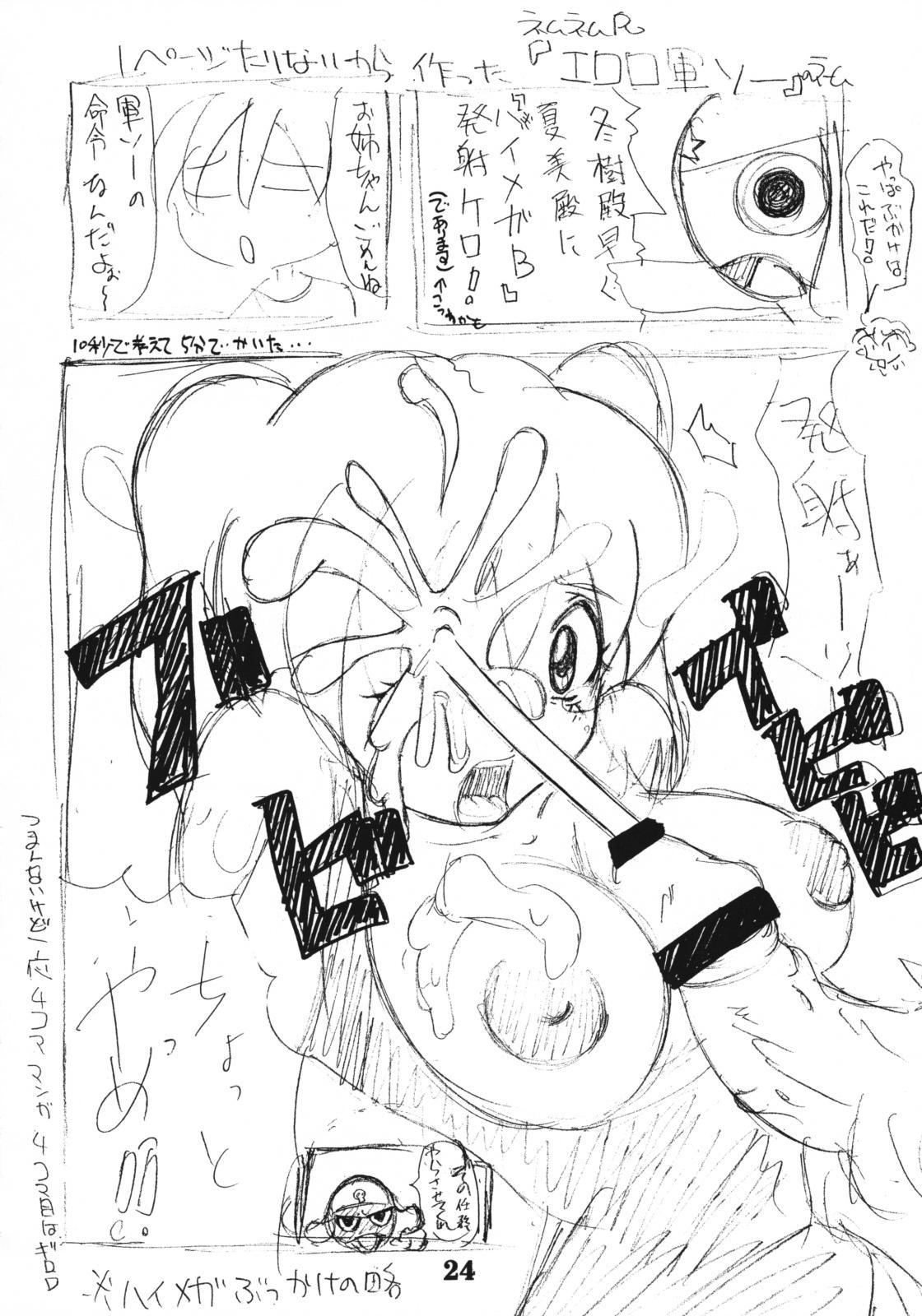 Koki no Tane 22