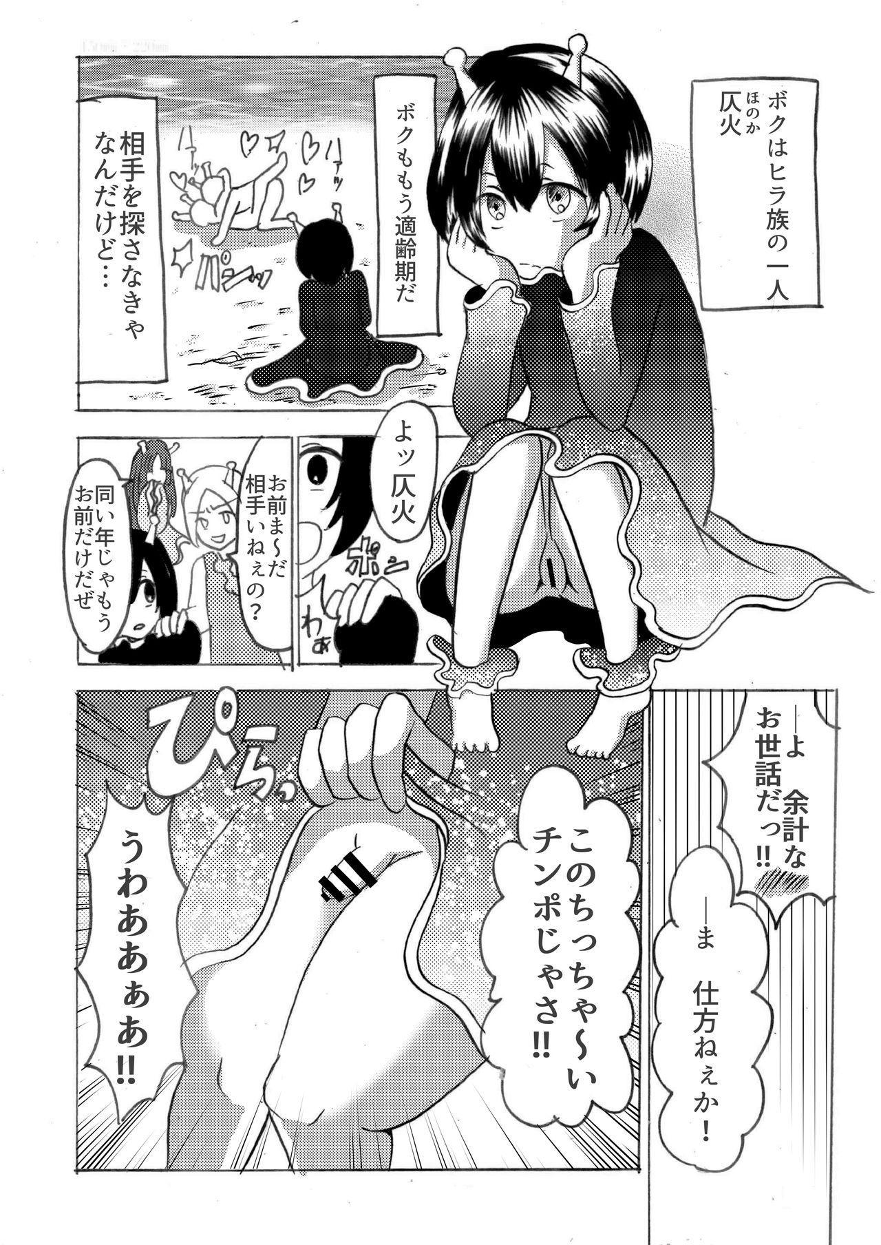 Hira-zoku no Hanashi 4