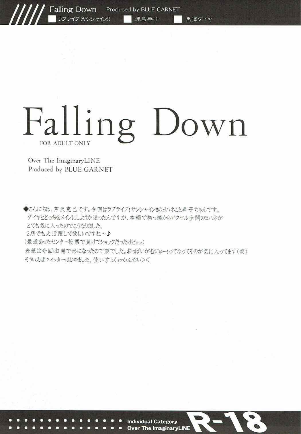 Falling Down 2