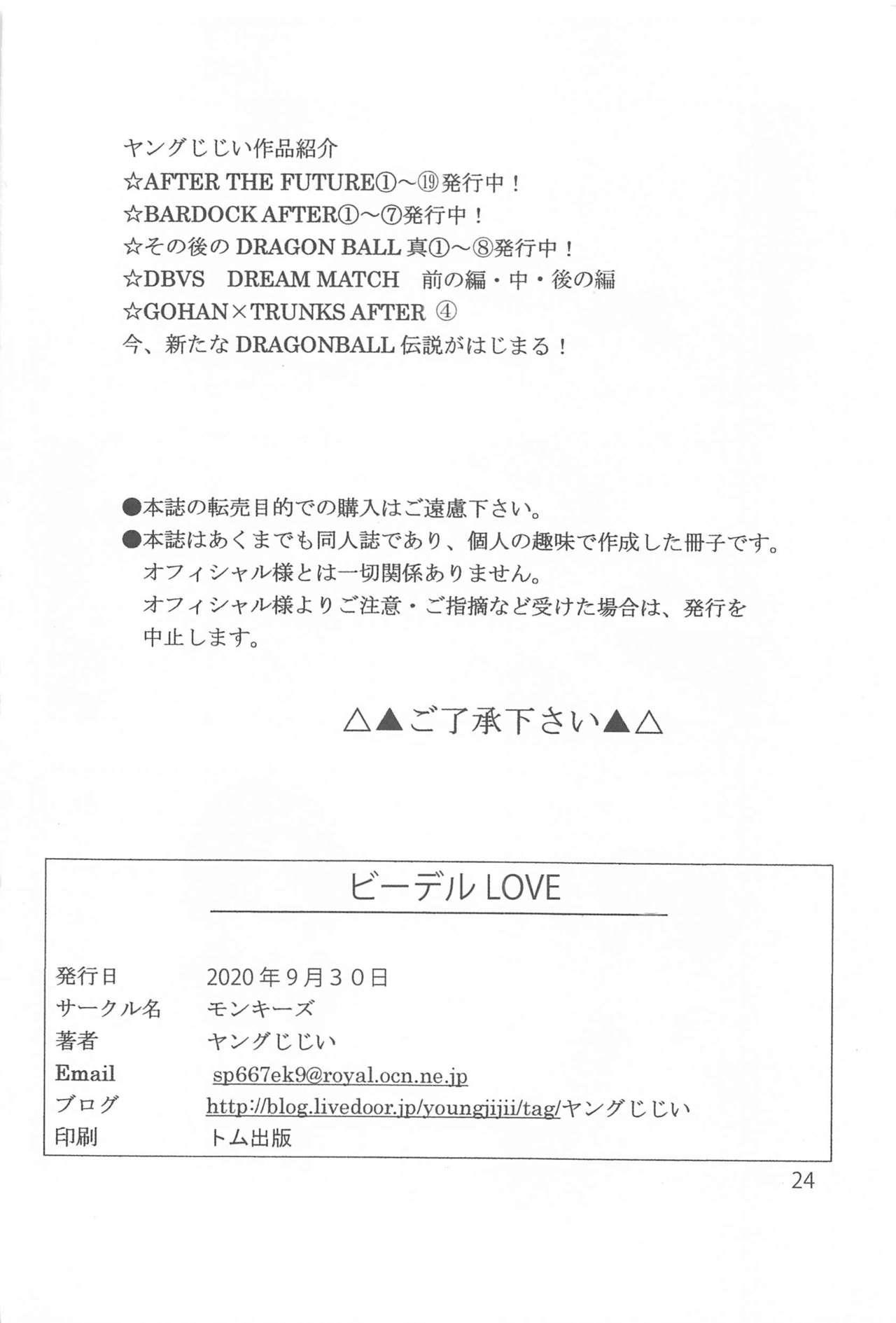 Videl LOVE 24