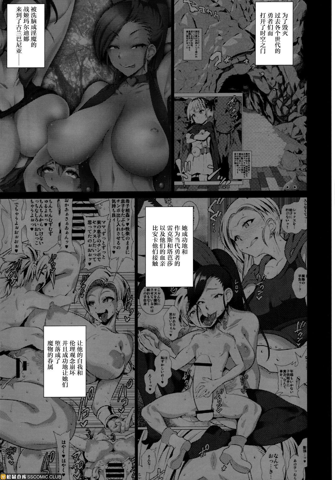 Rakuen In Hime EX 17
