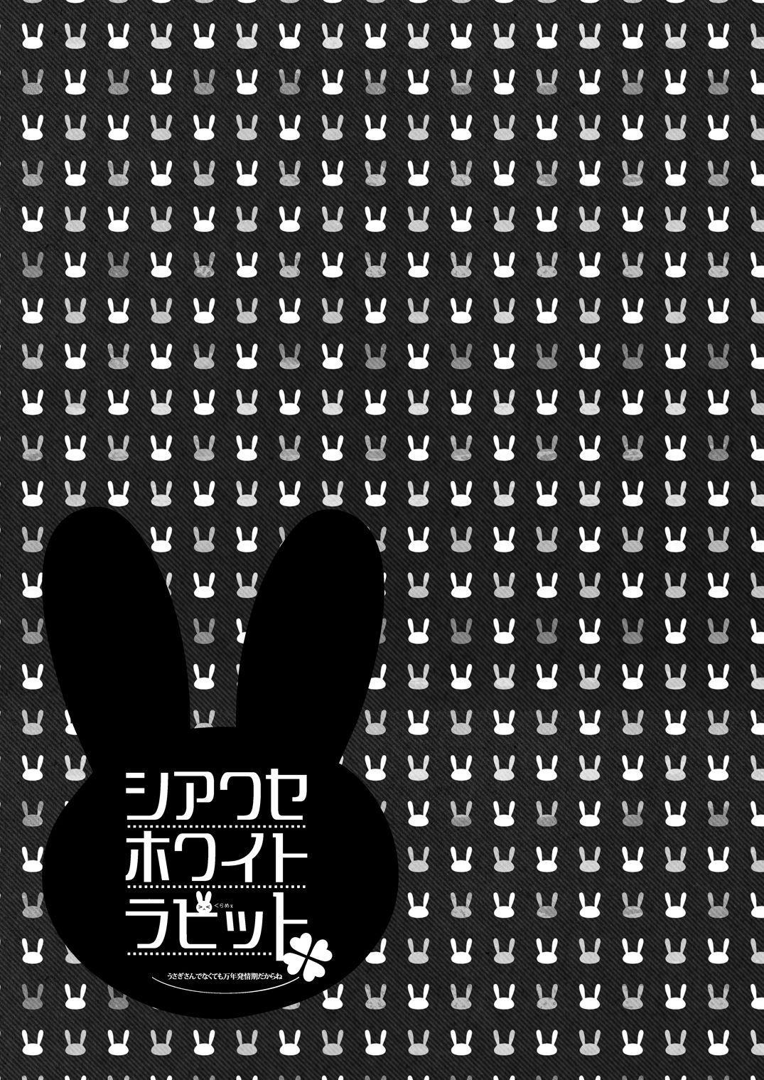 Shiawase White Rabbit 28