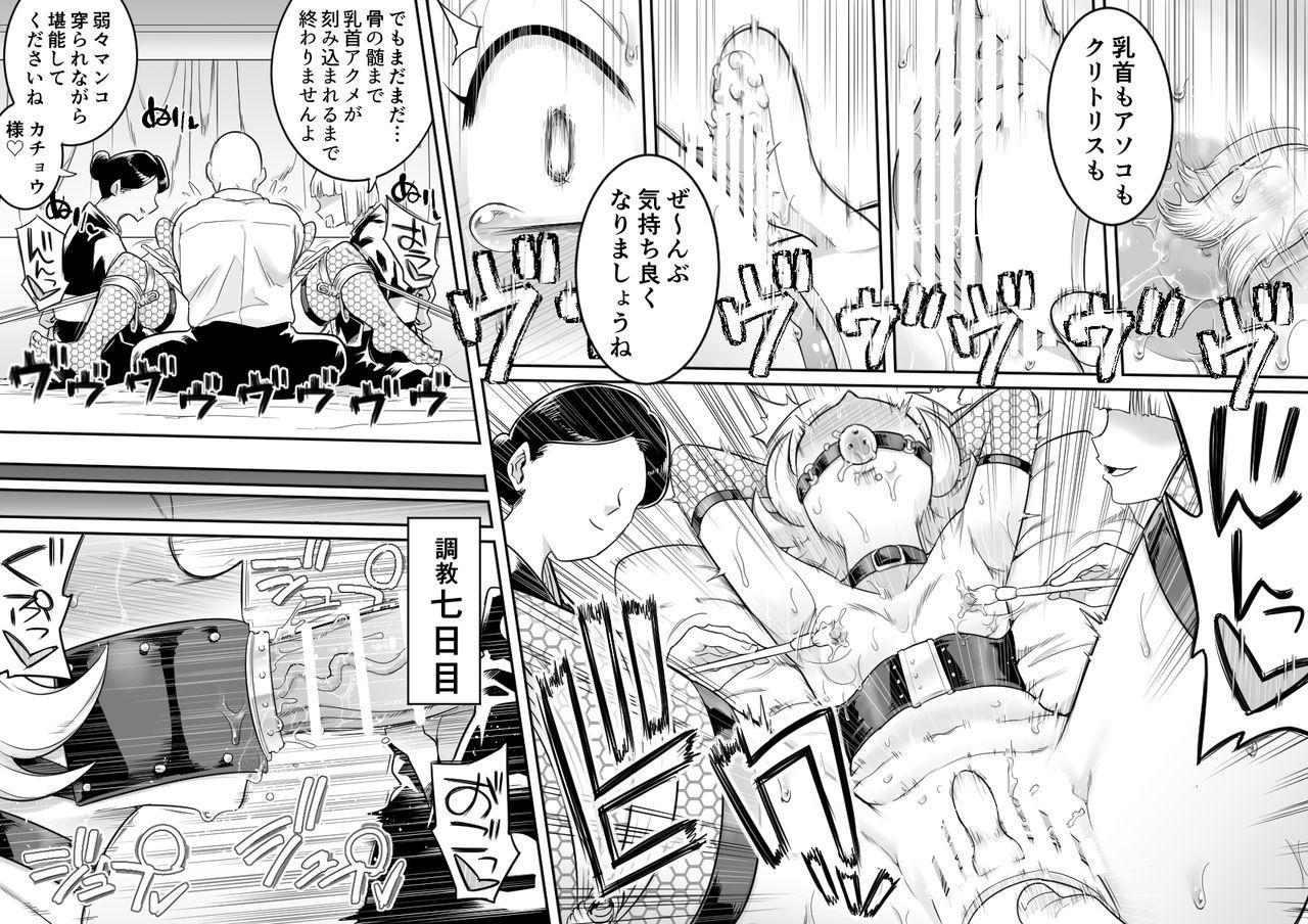Kachou Seidorei Choukyou II 6
