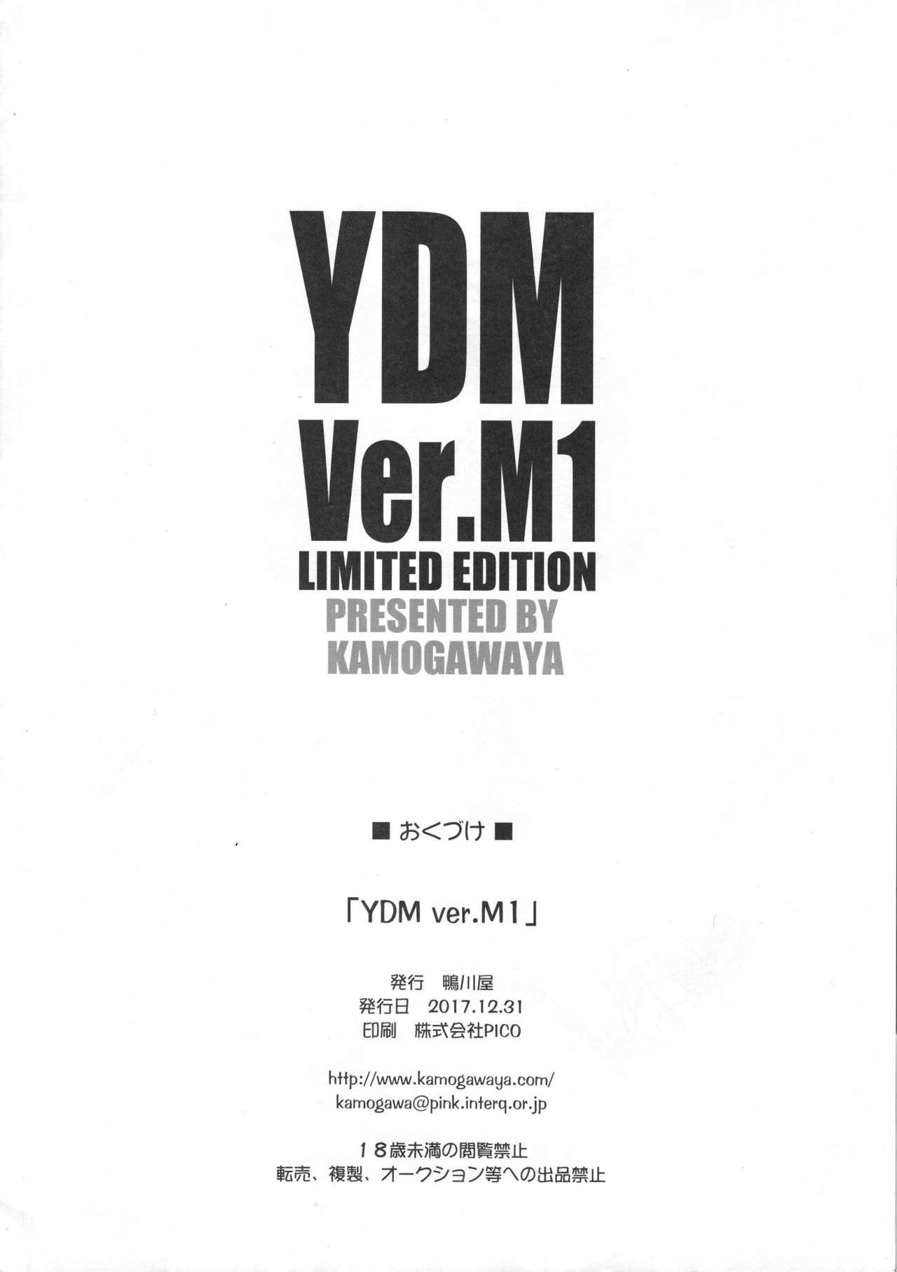 YDM ver.M1 12