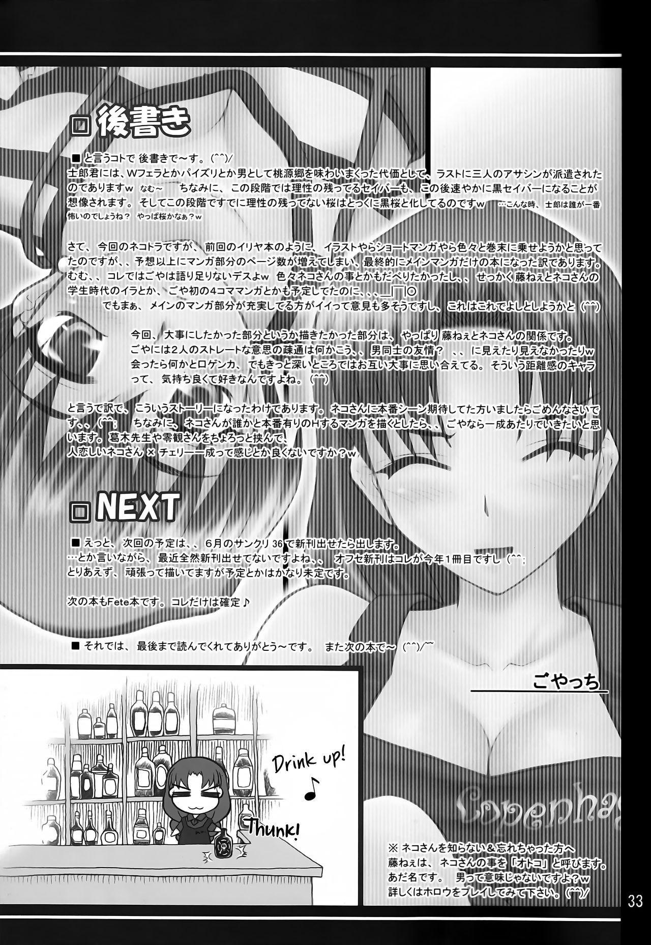 (COMIC1) [PURIMONO (Goyac)] Nekotora -Nekoka no Onee-san wa Suki desu ka?- | Cat Tiger: Do you like feline big sisters? Fate/Stay Afternoon (Fate/stay night) [English] [EHCOVE] 31