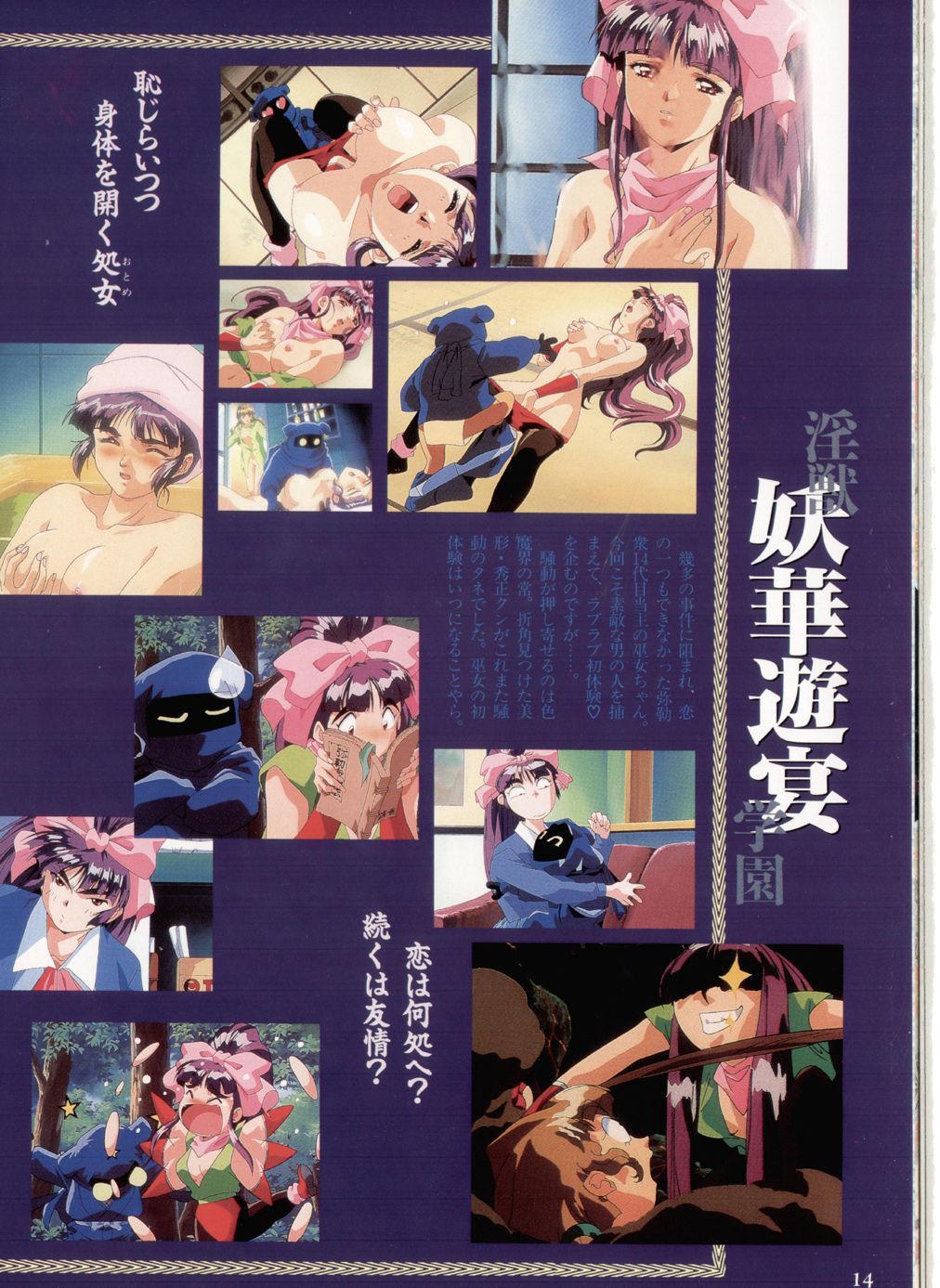 Injuu Gakuen You no Shou Secret File 9