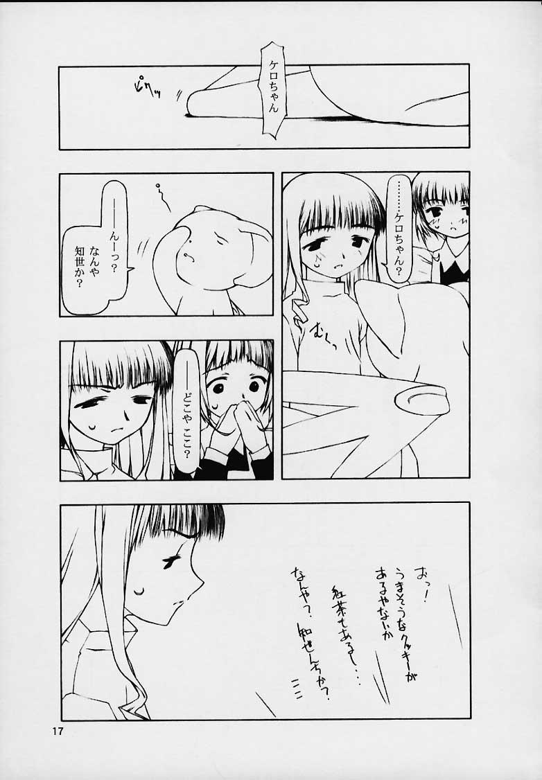 Motazarishi wa 15