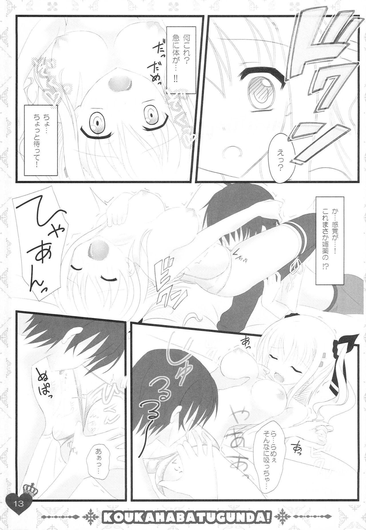 Ore no Rikka-san ga Biyaku o Tsukau Wake ga Nai! 12
