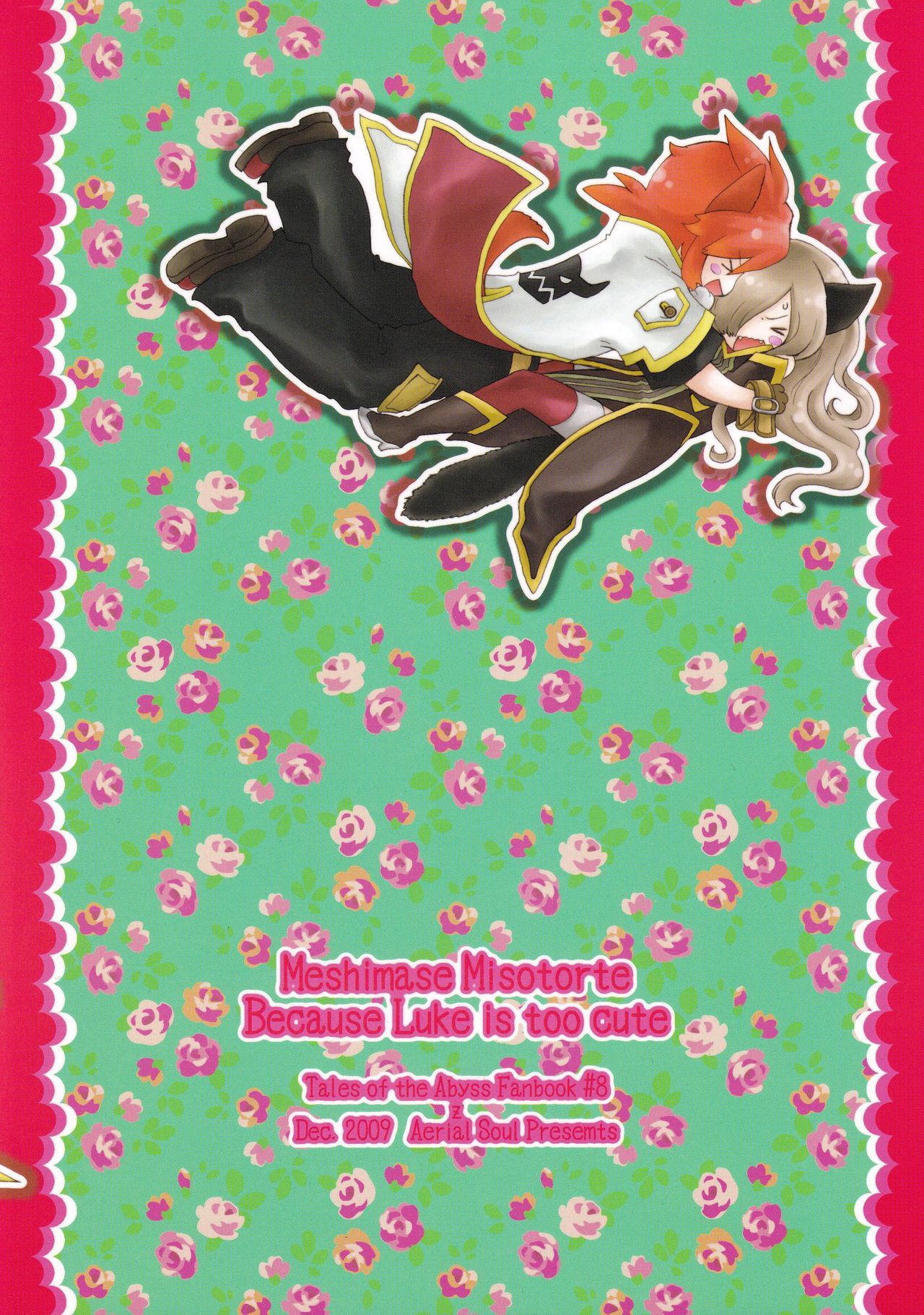 Meshimase Miso Torte 13