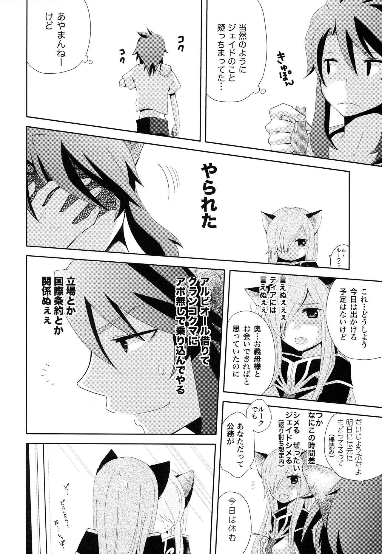 Meshimase Miso Panna 12