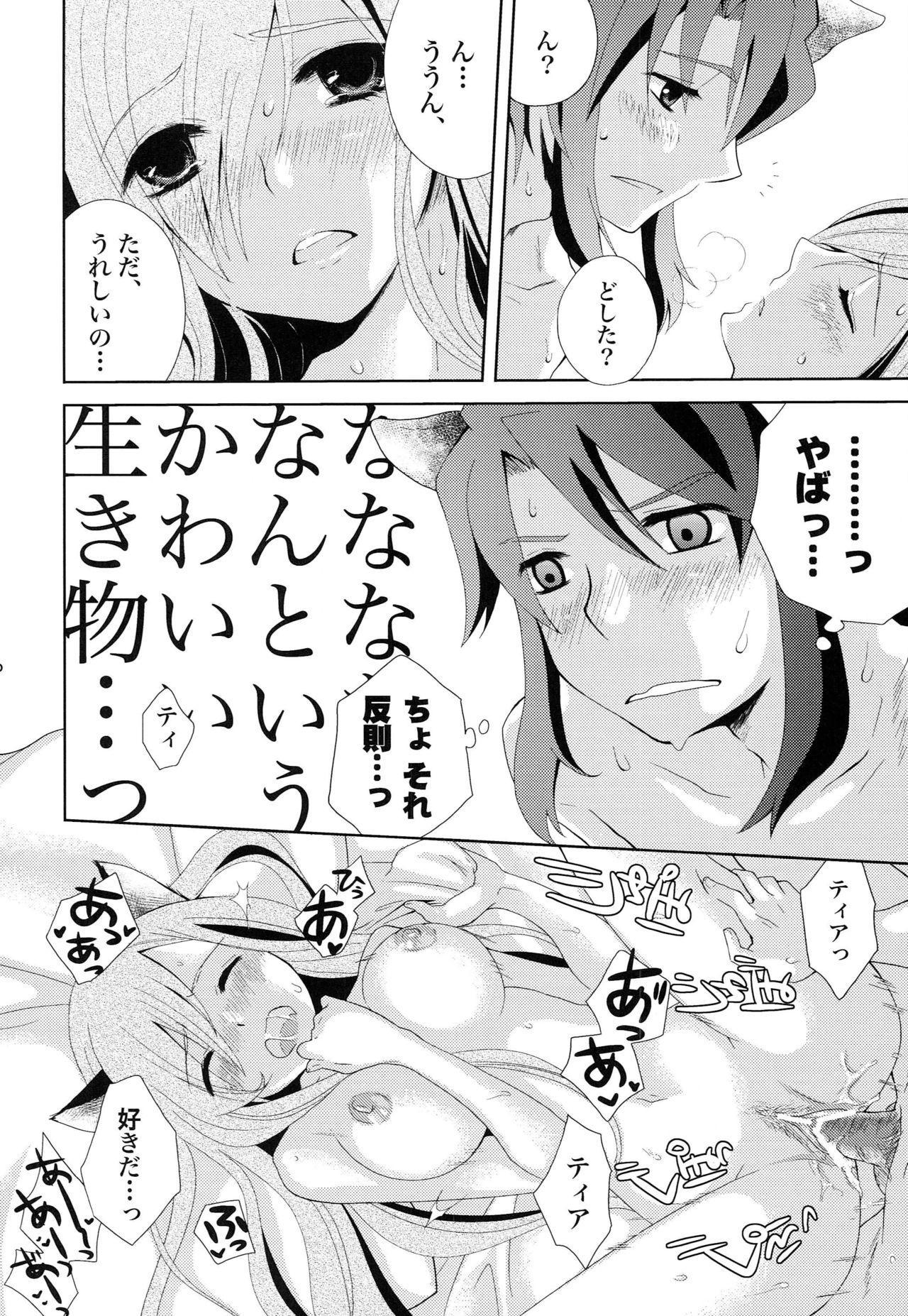 Meshimase Miso Panna 28
