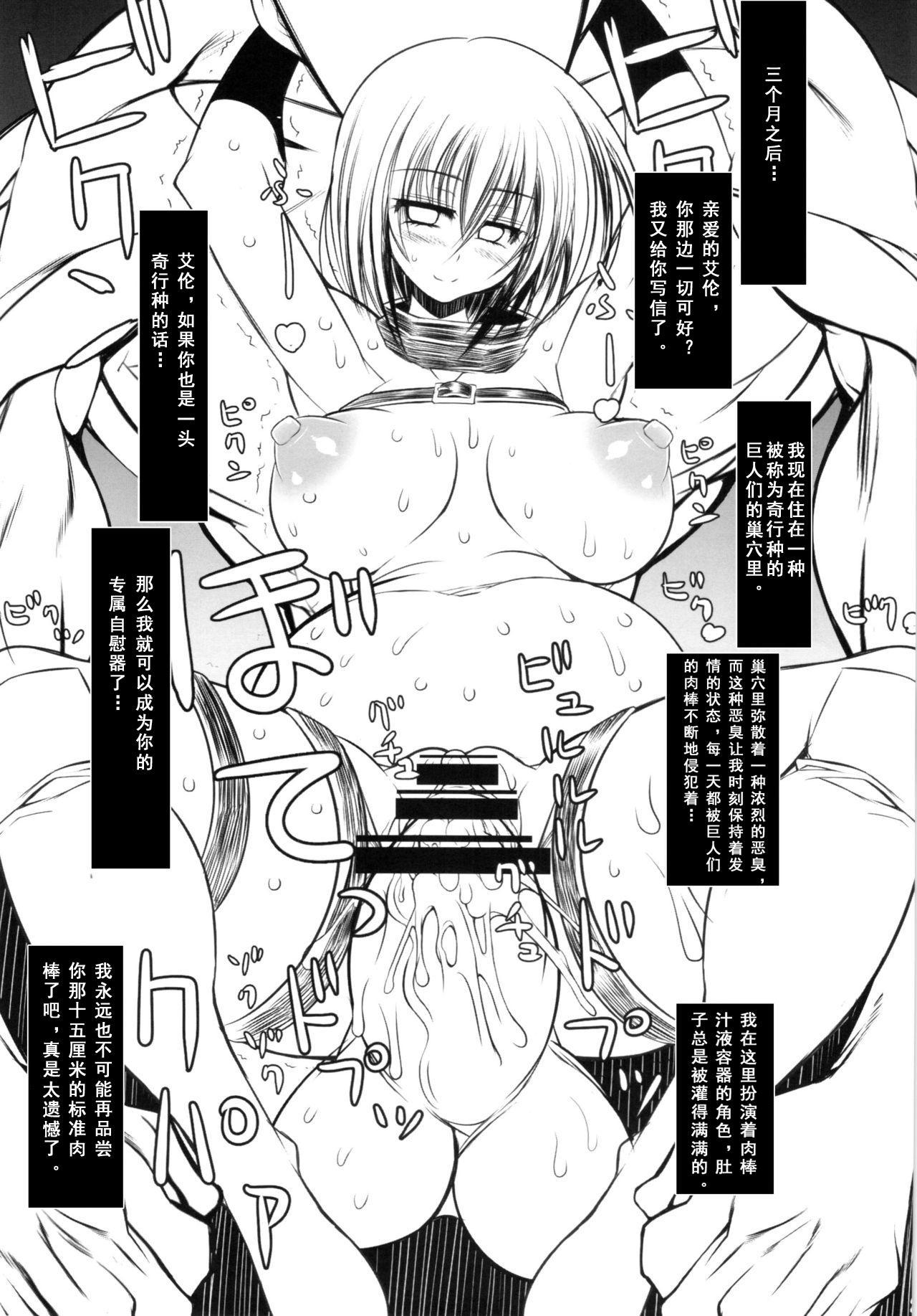 Shingeki no Daishou + paper   进击的代价 25