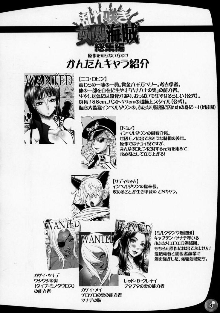 Midare Saki Joshuu Kaizoku Soushuuhen   Bloom, Pirate Hooker! Bloom! Annual 3